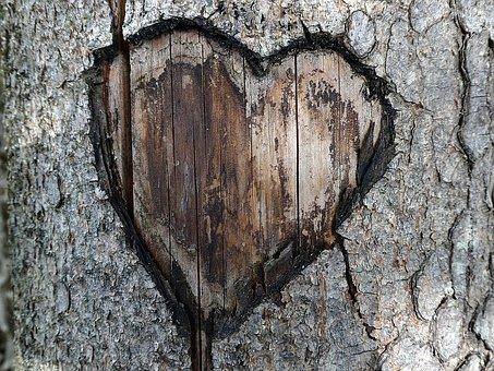 heart-2713321__340.jpg