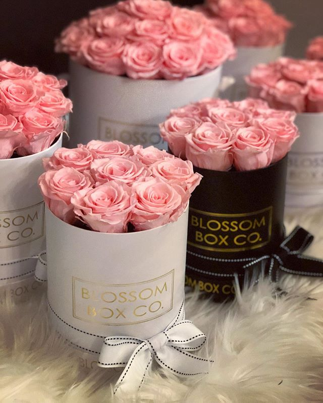 5 more sleeps until Mother's Day! 💗💗💗 #mothersday #preservedroses #pinkroses #adelaideflorist #blossomboxcoadl