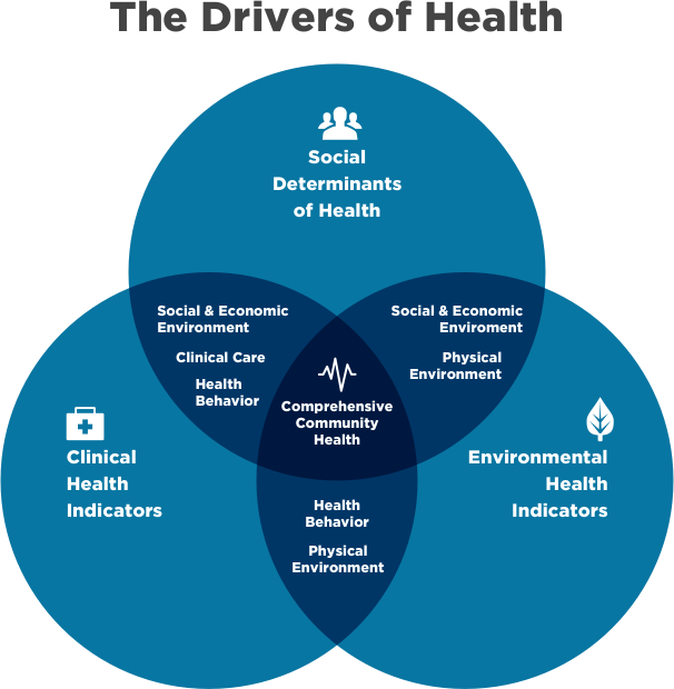 drivers-of-health-2 (1) (1).png