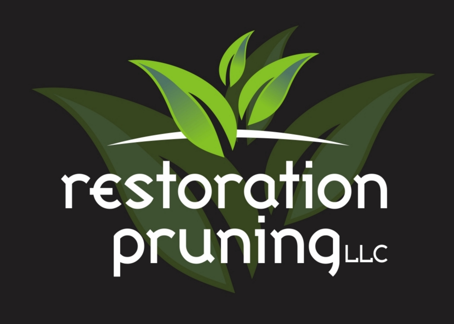tree work articles restoration pruning restoration pruning middot home tree work articles