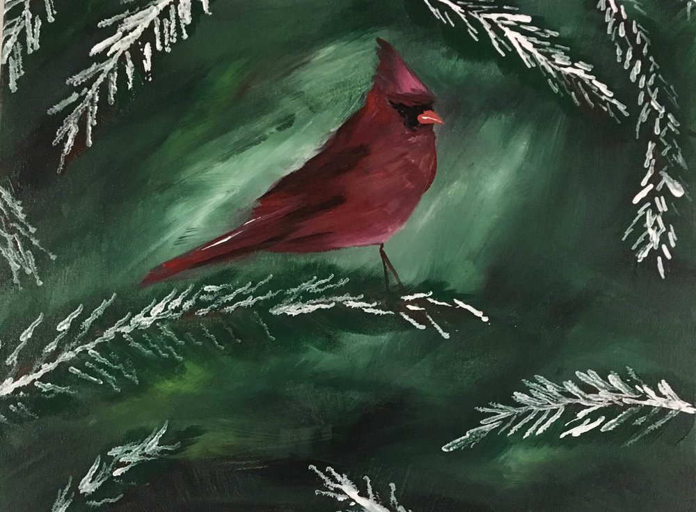 Cardinal in Evergreen.JPG