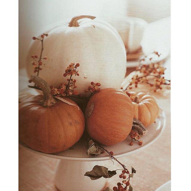 L'automne est arrivé 🍂🍁