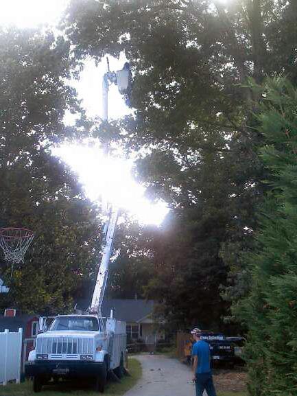 pruning-bucket-truck.jpg