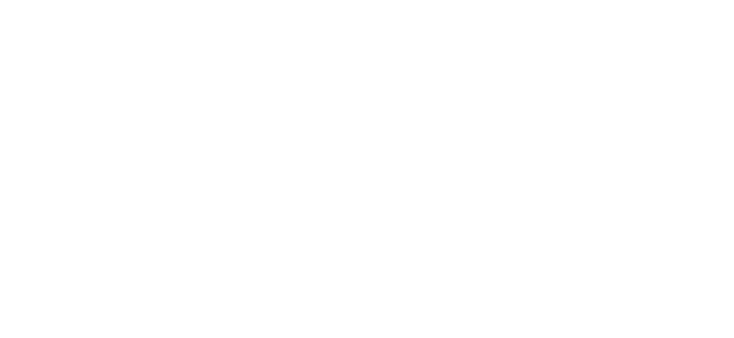Bear Productions