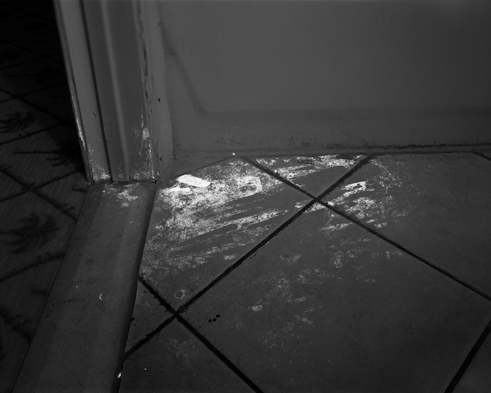 Evidence No. 7, 2009