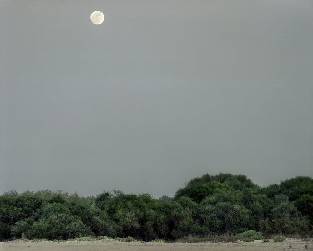 Full Moon, 2008