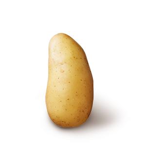 Kartoffelsorten_Amandine_Schatten_quad.png
