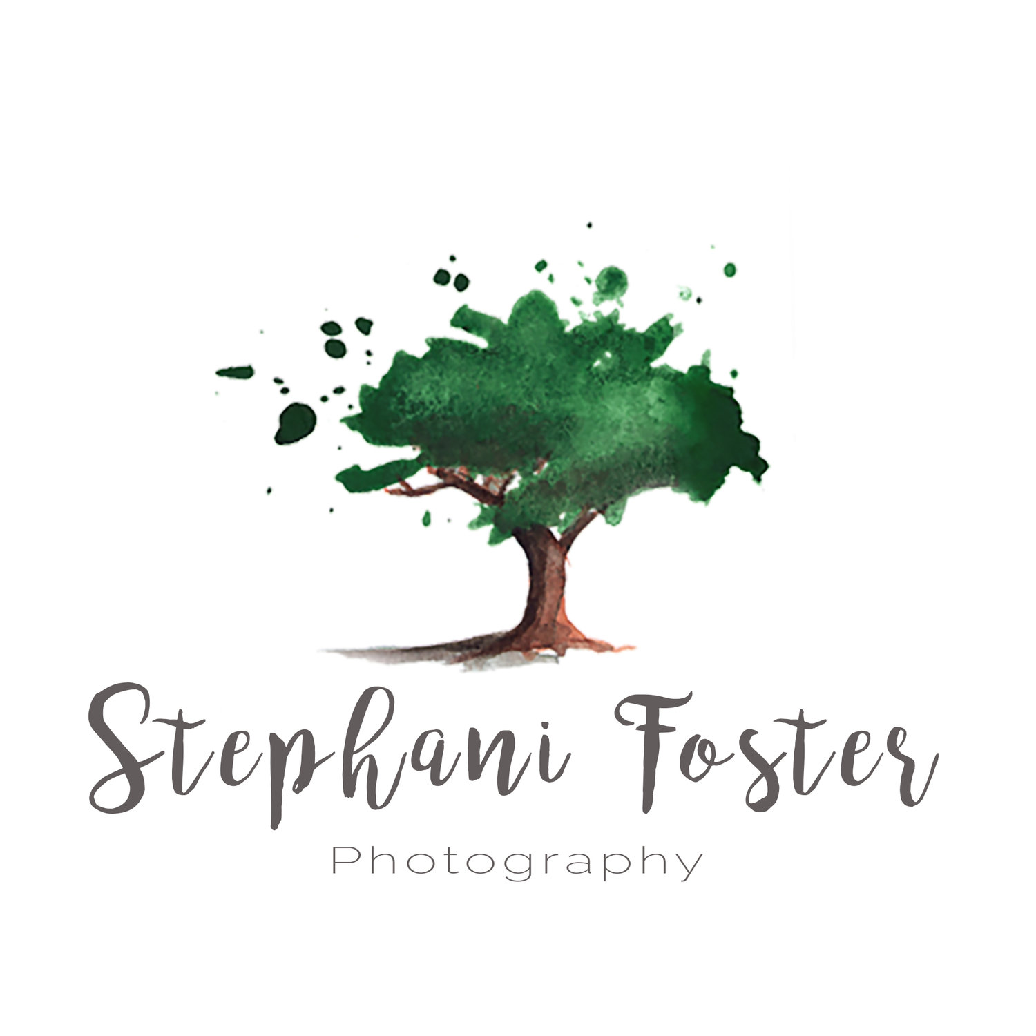 Stephani Foster Photography