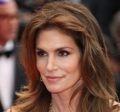 The Leaked Cindy Crawford Photo / Hollywood Reporter