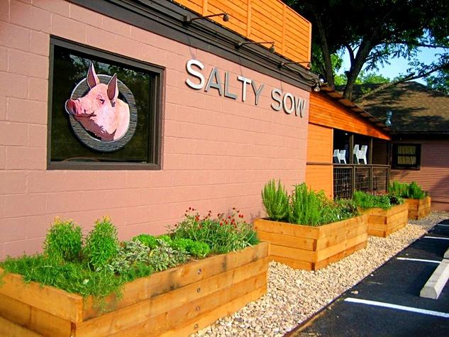 Salty Sow_3.jpg