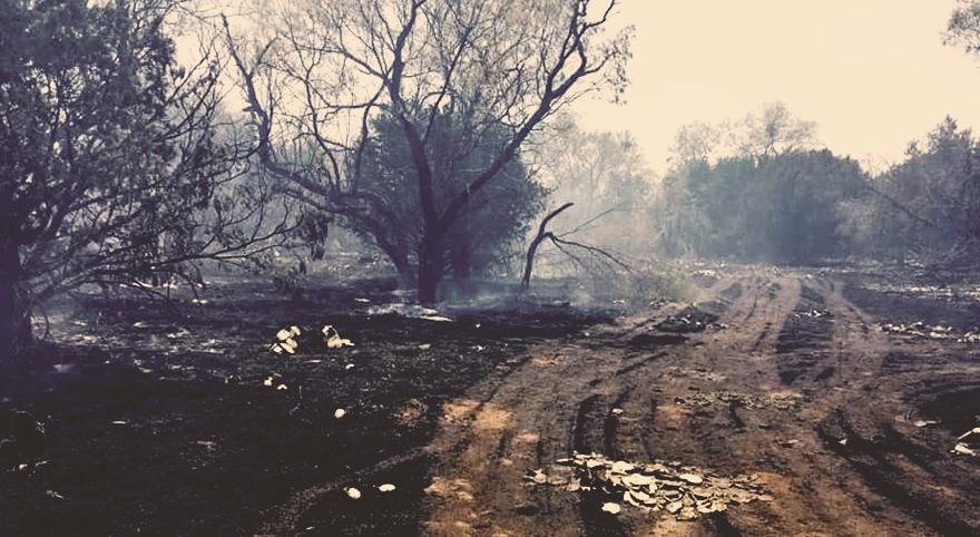 190/Crawford Fire