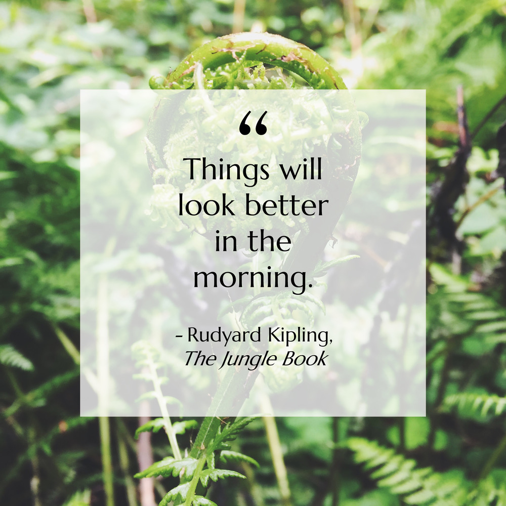 "Mentality Monday - ""Things will look better in the morning."" - Rudyard Kipling, The Jungle Book"