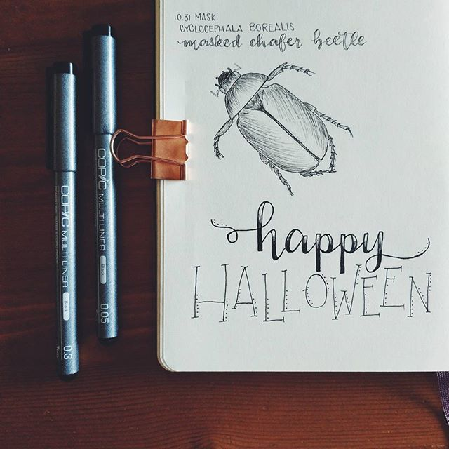 Behold, the final Inktober Illustration of #31daysofcreepycrawlies ❤️ Happy Halloween, everyone!! • • #inktober #inktober2017 #insectart #moleskine_arts #moleskinesketchbook #insectillustration #penandink #penfreaks #inkfeature #inkdrawing #copic #copicmultiliner #artstagram #artistsoninstagram #artofinstagram #instaart #drawingoftheday #artsyfame #drawsomething #etsyartist #etsylove #illustrationgram #fineliner #linedrawing #penart #inkonpaper #vscoart #rebeccaryanart