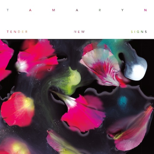 Tamaryn ‎– Tender New Signs