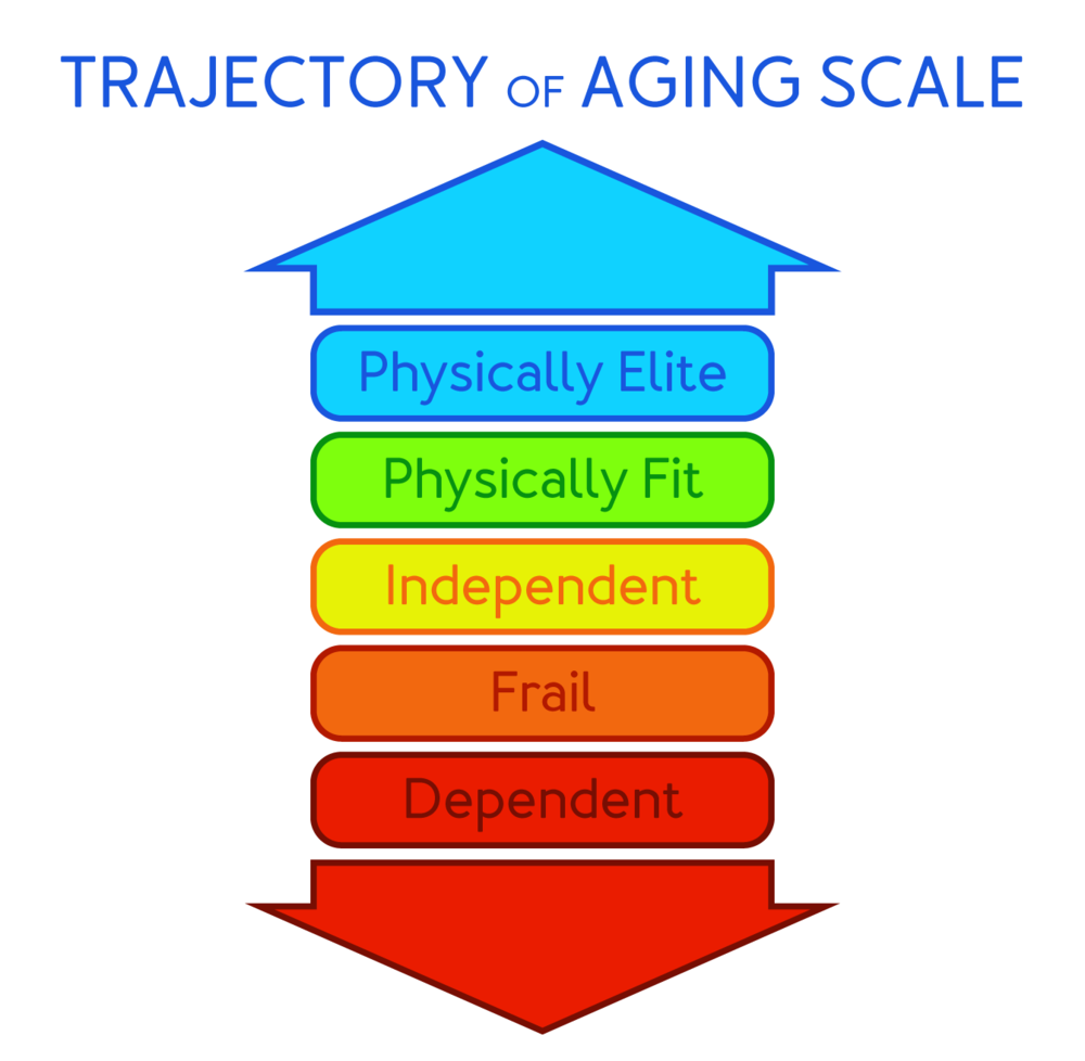 Trajectory of Aging Scale