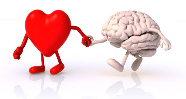 Heart-Leading-Brain-2-620x330.jpg