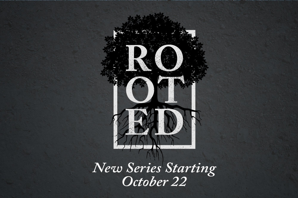 rooted-3-2 - Starting.jpg