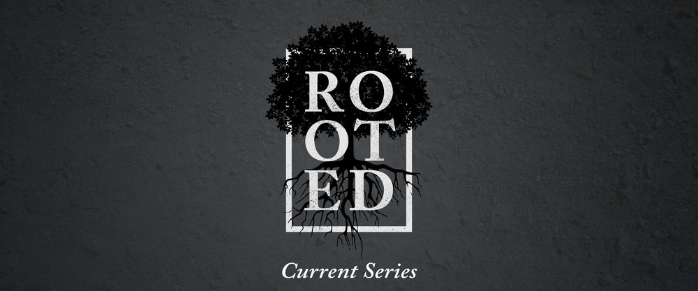 rooted-Slider - Current(1).jpg