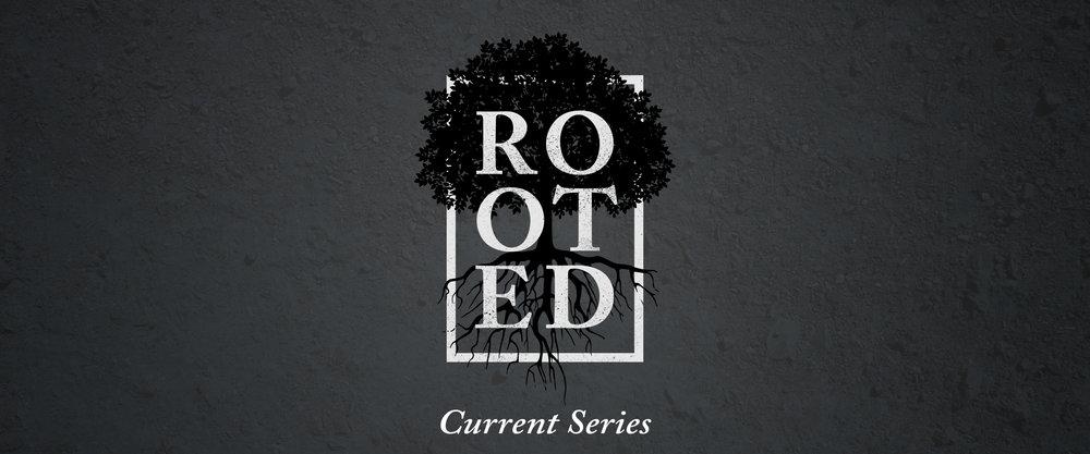 rooted-Slider - Starting.jpg