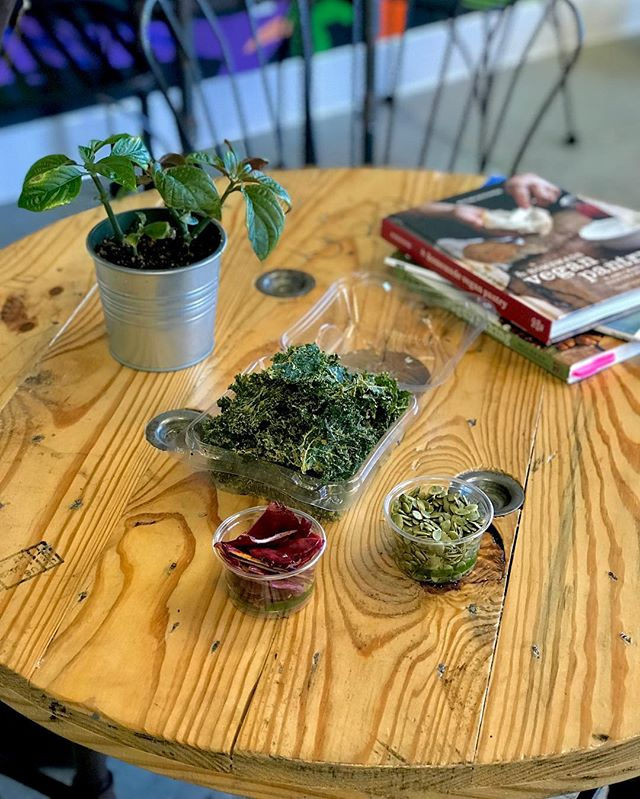 We have snacks!!! Kimchi Kale chips, Mangoes (soaked in Beet Kvass), and  Sprouted Pepitas (soaked in Demonic Tonic). All organic, vegan, and raw ✌🏼✨