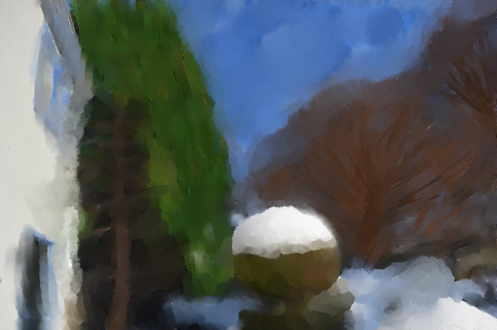 pic snow 1.jpg
