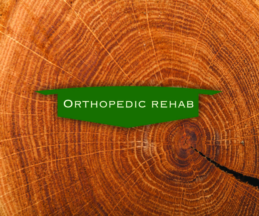 UPSTATE PHYSICAL THERAPY - Orthopedic Rehab