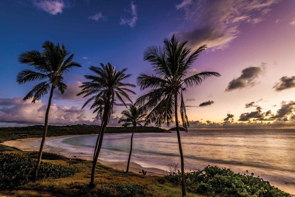RHMB_Beach03.jpg