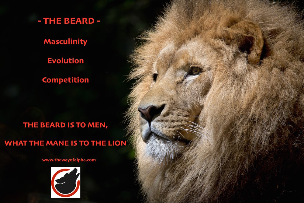 The Beard is to Men, what the Mane is to the Lion