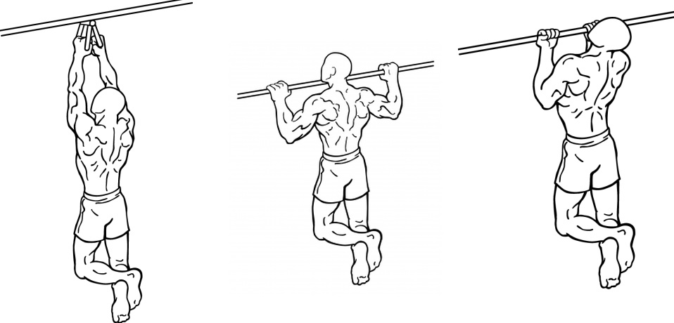 Neutral grip, pronated grip and supinated grip Pull Ups