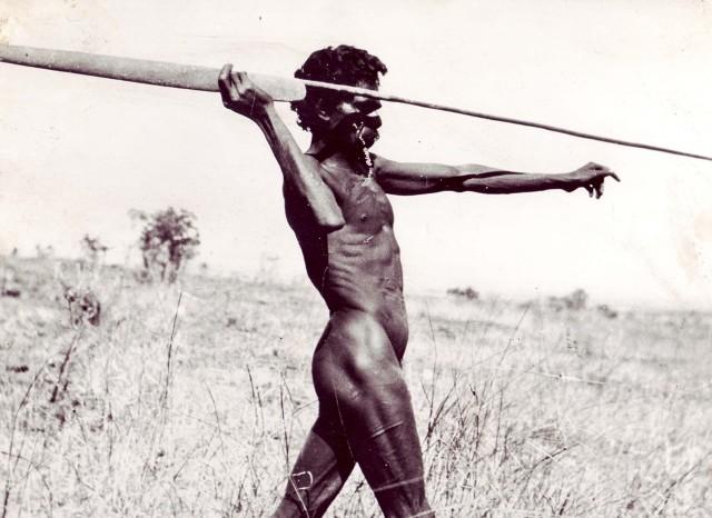 aboriginal spear.jpg