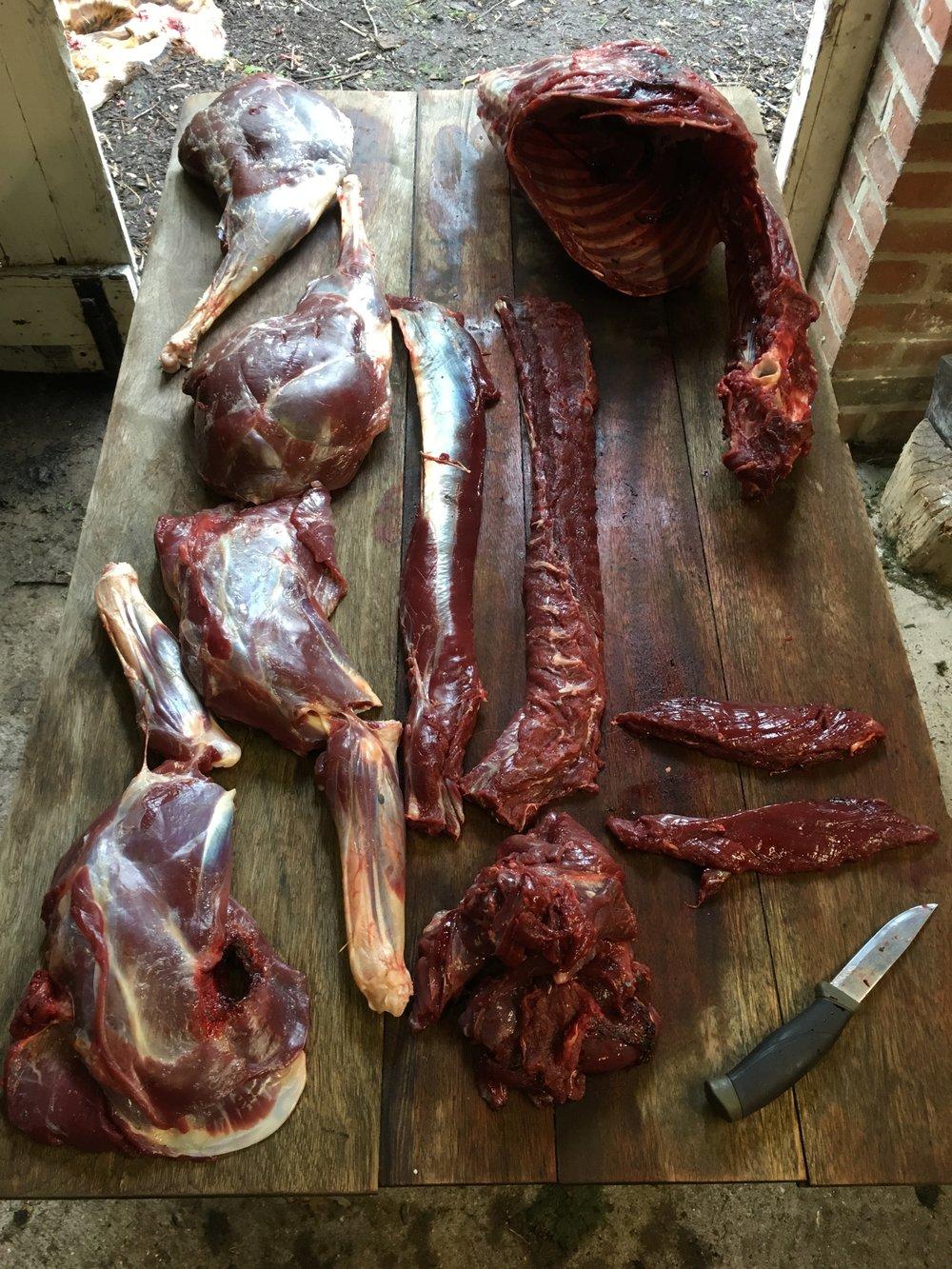 game meat.JPG