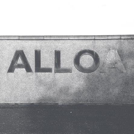 ALLO_Gallus_Web.jpg