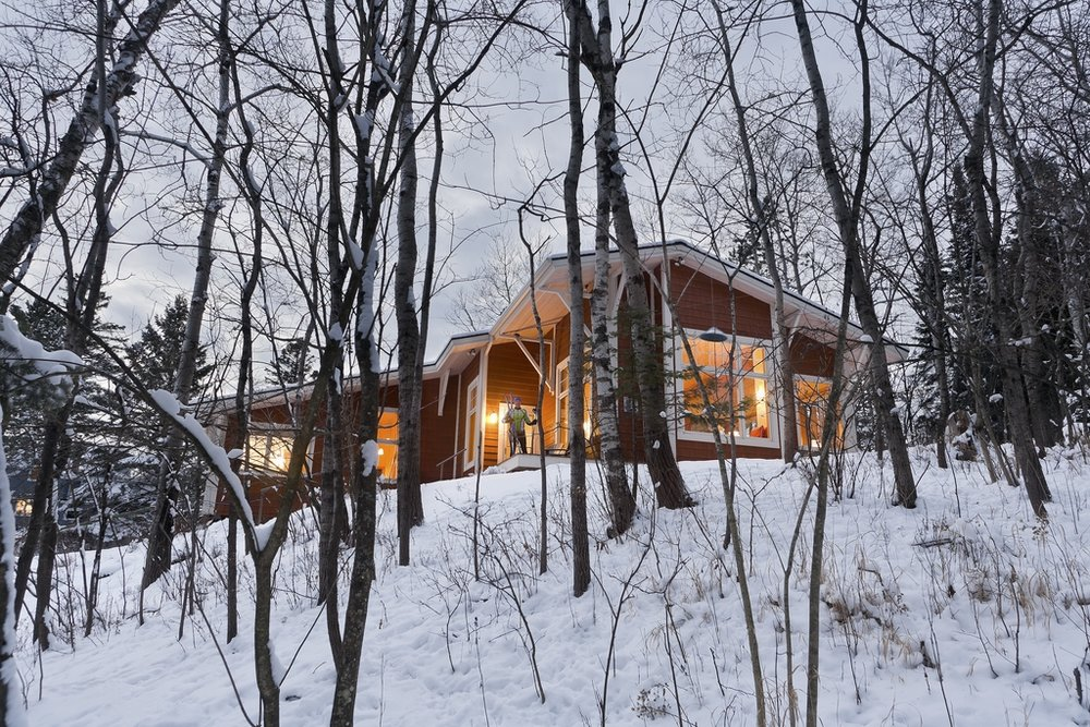 House_Trees_Skier.jpg