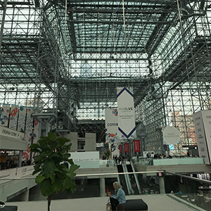 From this long view, you get an idea of the length and breadth of the Javits Center.  Buyers from all around the world descend here to curate the best selections they can find to please their clients...