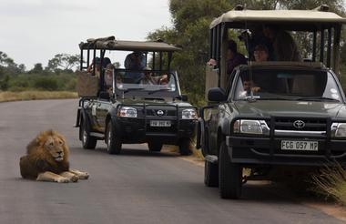 Kruger_Park.jpg