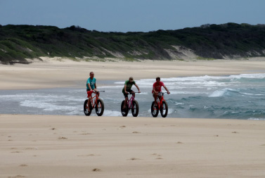 Activities_images-fatbike.jpg