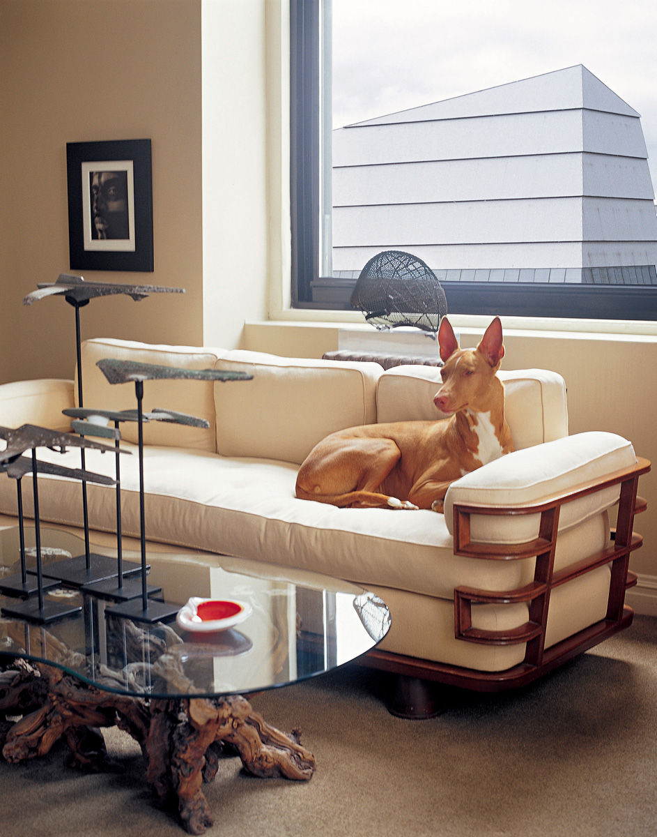 3.-ATI---AT-Livingroom-Vignette-with-Dog_WEB.jpg