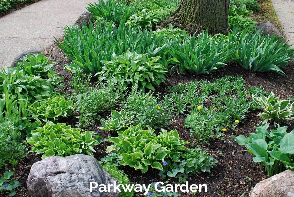 tlg-slide-parkway-garden.jpg
