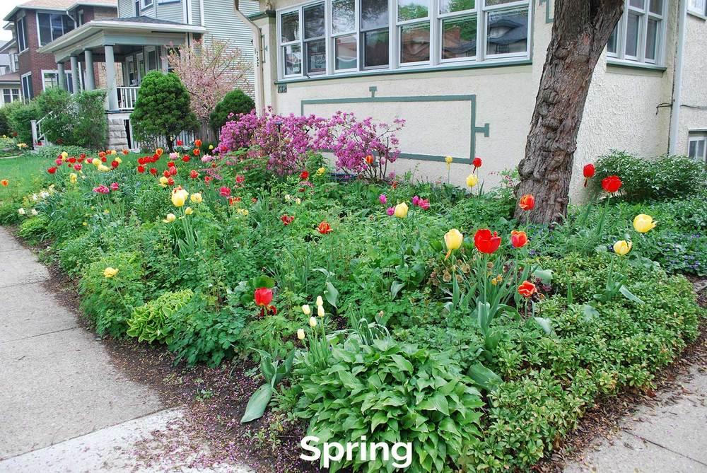 tlg-slide-spring.jpg