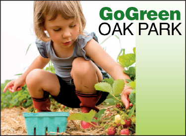 Protect Oak Park from pesticides and toxic substances. Numerous confirmed studies have linked pesticides to a wide range of health conditions in adults, and particularly in young children.