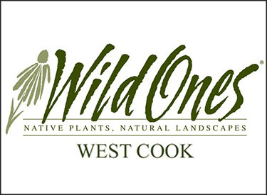 Wild Ones is devoted to helping people use native plants in landscapes and gardens. Join our chapter and help heal the earth one yard at a time.""