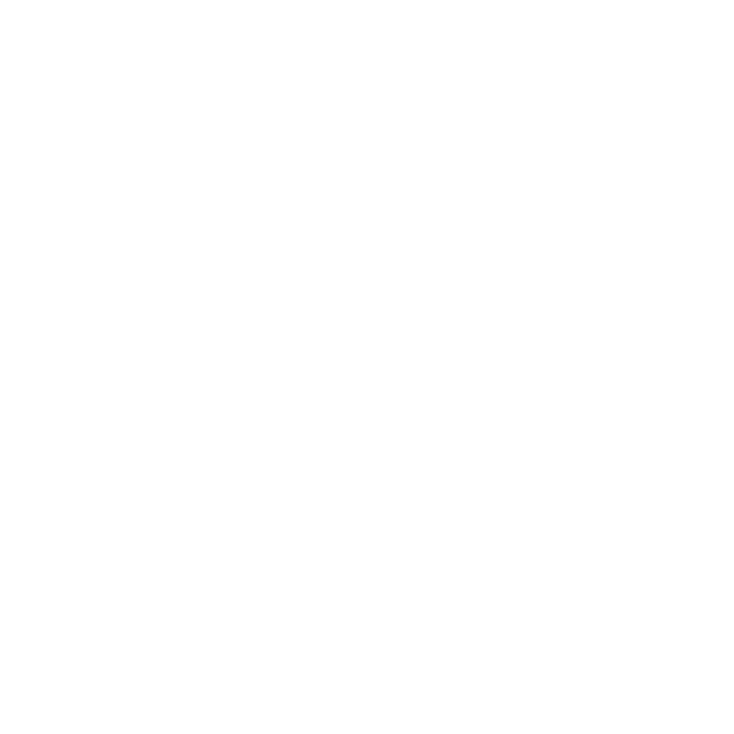 Rainier Recruiting