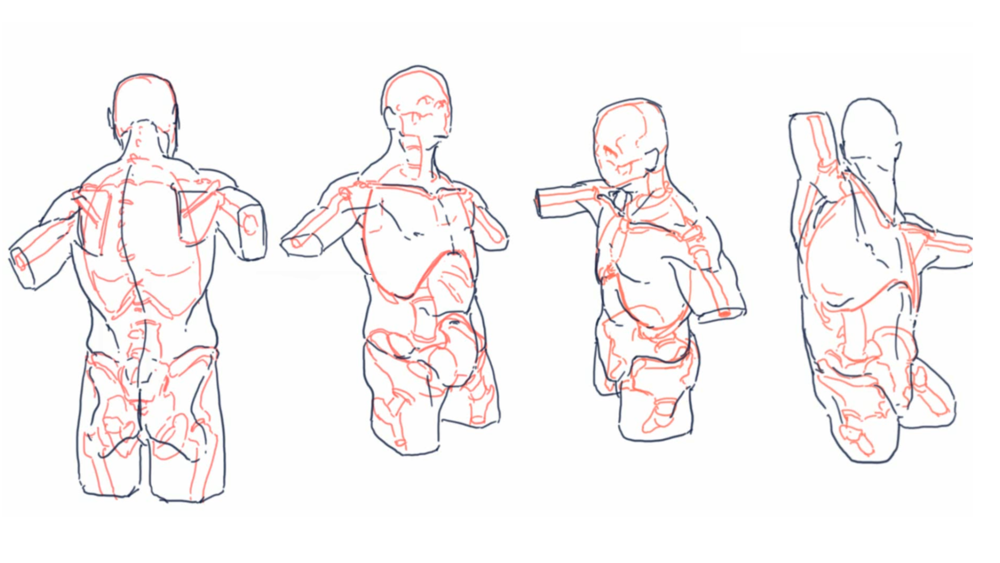 anatomystudy.png