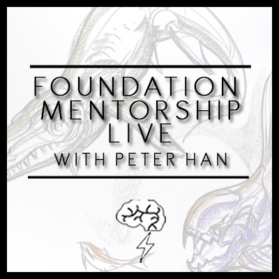 Foundation Mentorship