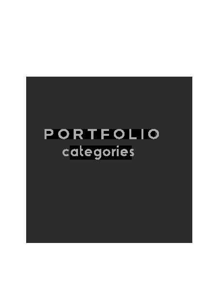 portfoliocatagories.png