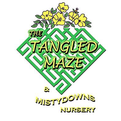TangledMaze-logo.jpg