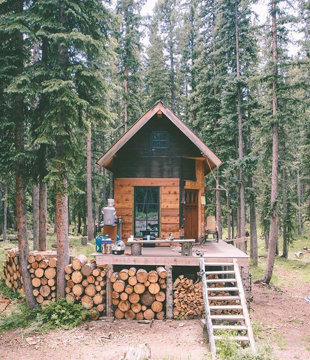 Gorgeous Eco Inspo from @lostintheforrest 😍🌱 . . . . #inspiration #sustainable #tinyhouse #wednesday #humpday #ecofriendly #ecohouse #ecodesign