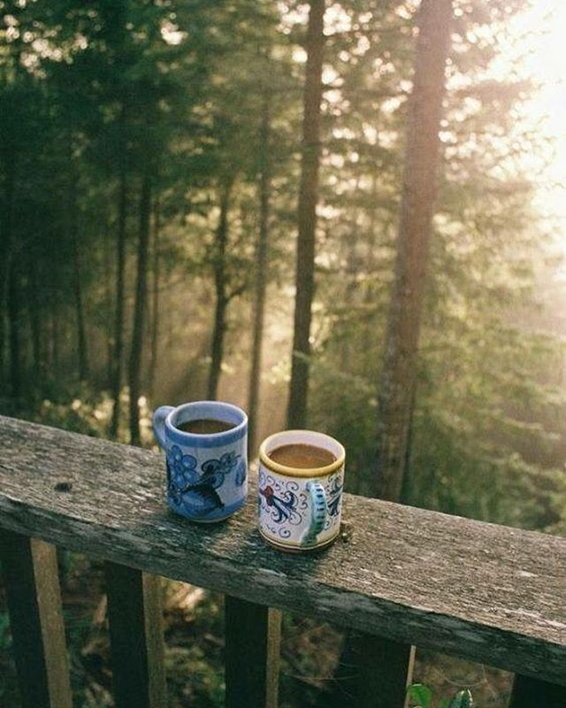 Monday coffee inspo to get you to the end of the day. Dreaming of fresh air and tall trees👌🏼🌱 . . #environment #ecofriendly #eco #pintrest #coffee #mondaymood #inspiration #sustainable
