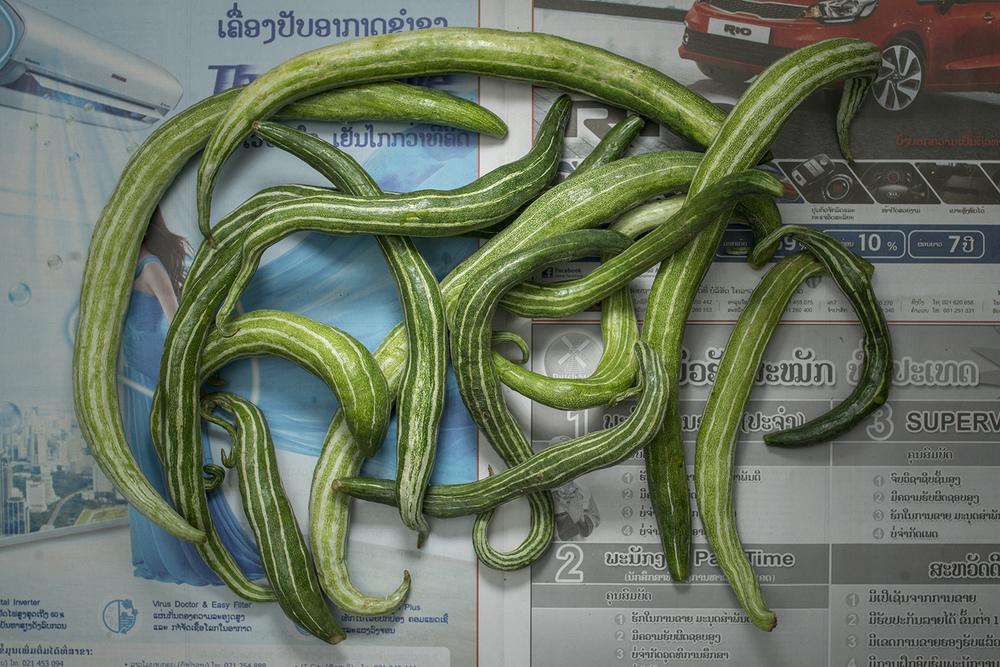 TPL_Laos                                                                 2194.jpg