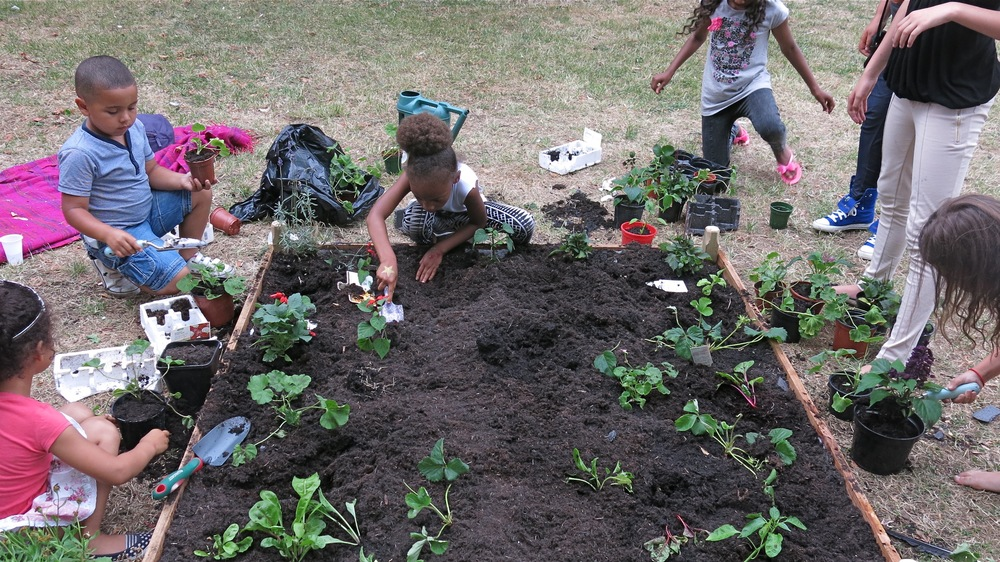 Children planting 2.jpg